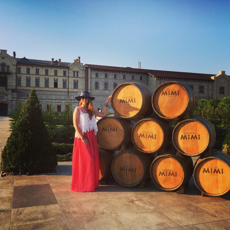 Castelul, prințesa și vinurile